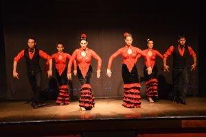Flamenco show at Palacio del Flamenco-0