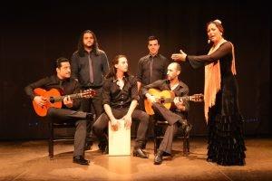 Flamenco show at Palacio del Flamenco-1