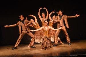 Flamenco show at Palacio del Flamenco-2