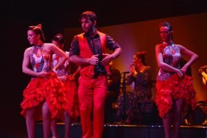 Flamenco show at Palacio del Flamenco-13