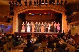 Flamenco show at Palacio del Flamenco-14