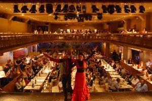 Flamenco show at Palacio del Flamenco-15