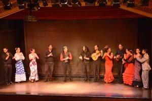 Flamenco show at Palacio del Flamenco-16