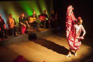 Flamenco show at Palacio del Flamenco-18