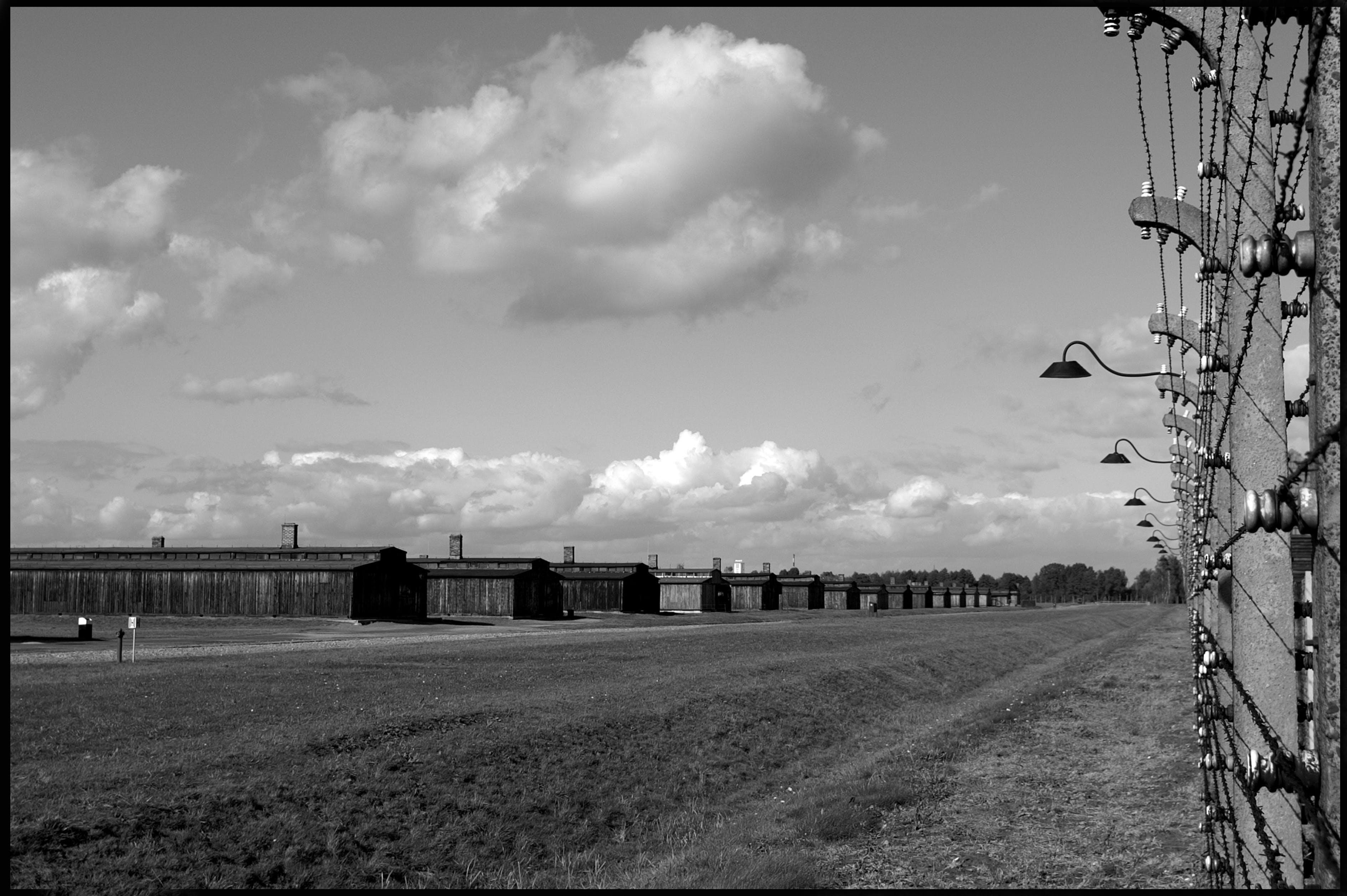 Auschwitz Birkenau Museo 7