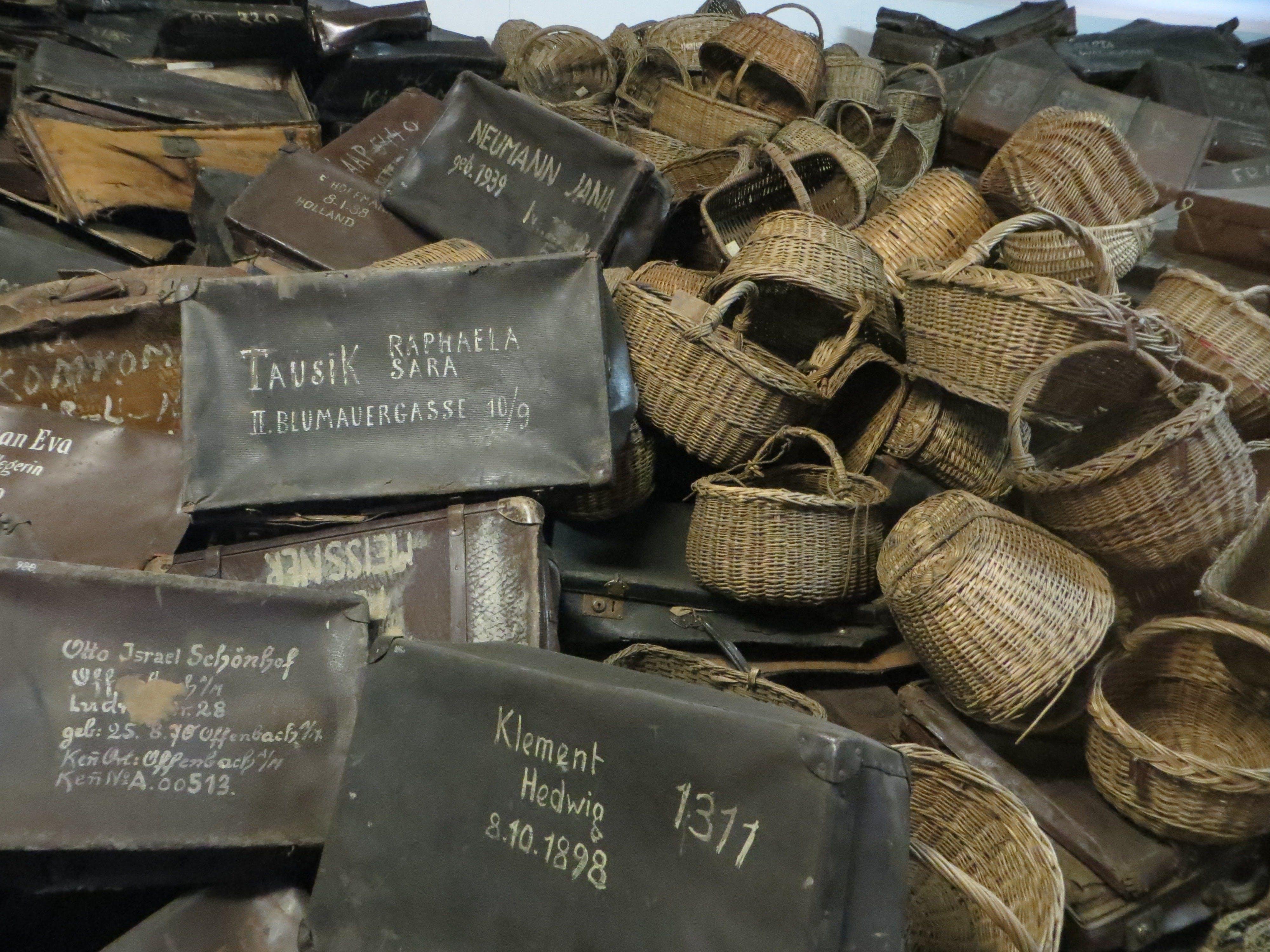 Auschwitz birkenau Museo tour 4 jpg