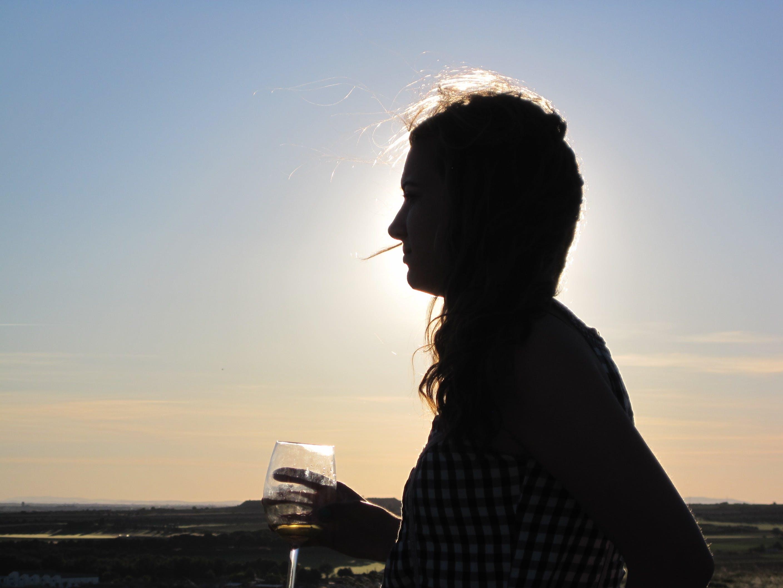 Molinos de viento de Don Quijote de vino tour de Madrid-2