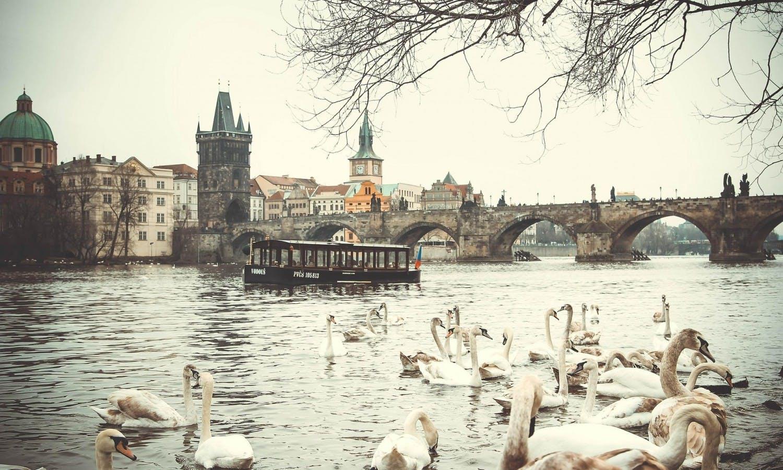 Excursión de día completo Praga y crucero por el río lunch3.jpg