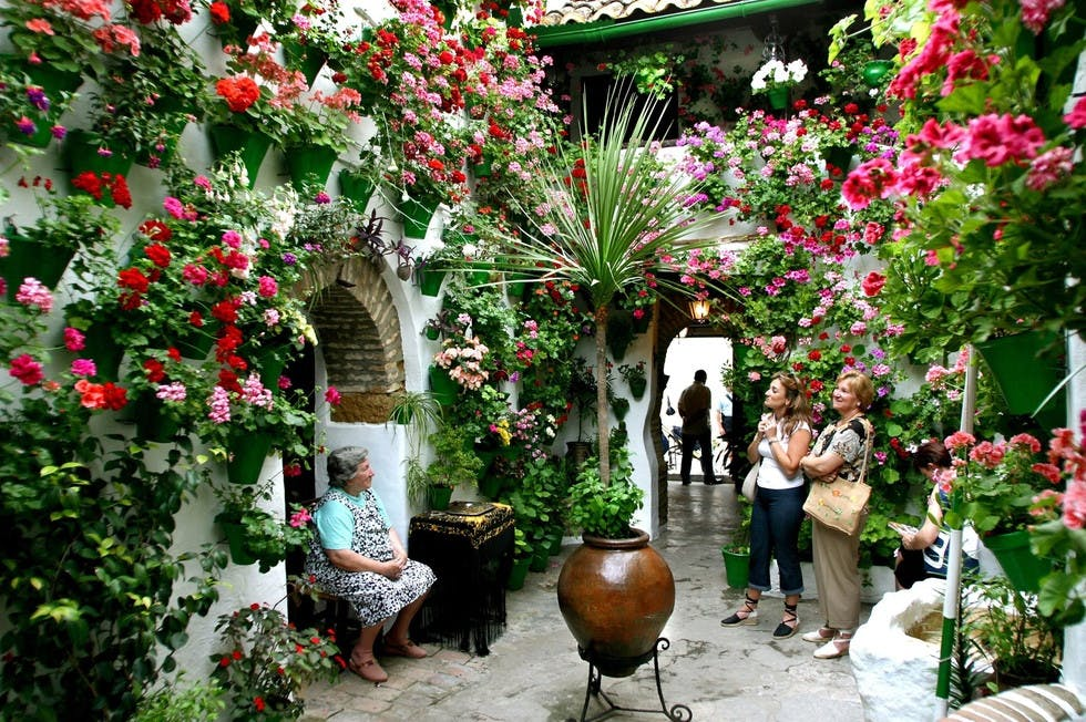 Patios de Córdoba 4 jpeg