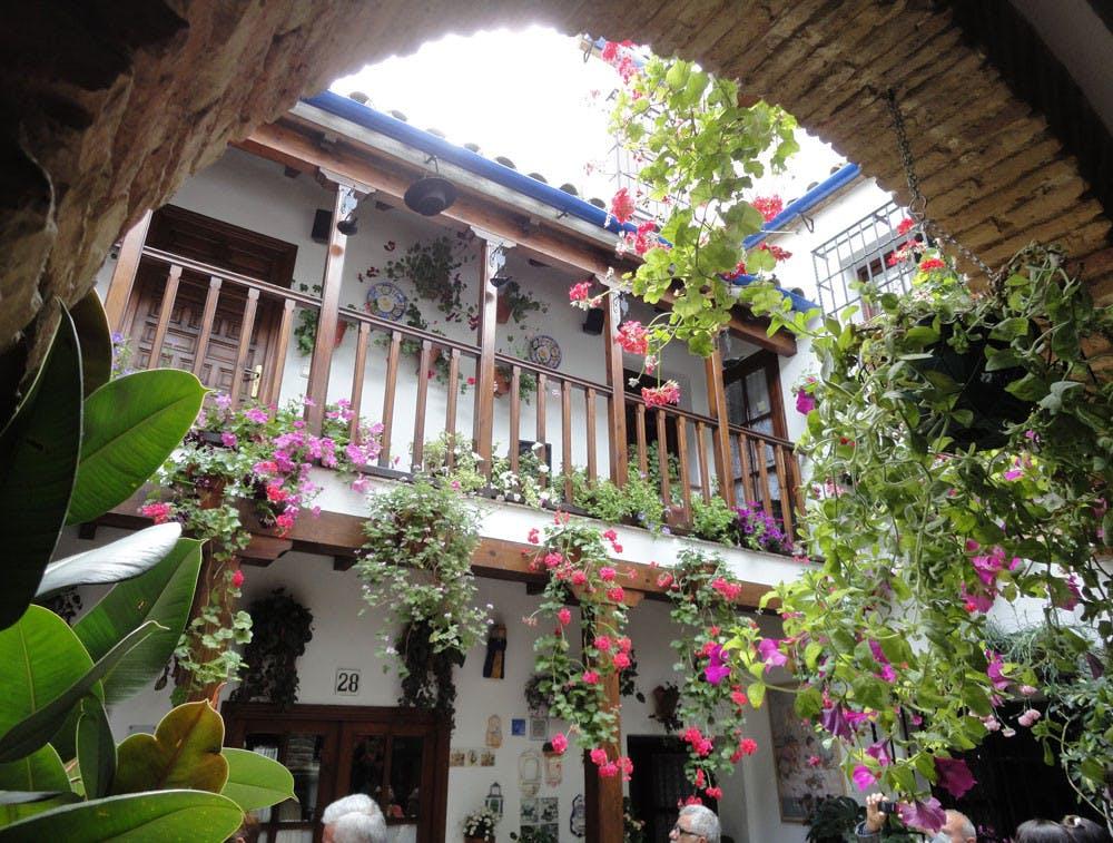 Patios de Córdoba 5 jpeg