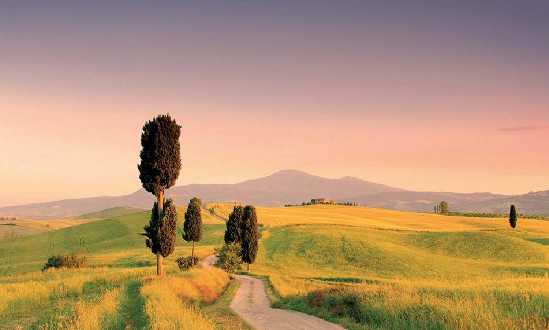 Montalcino, Pienza y gastronómicas de Montepulciano Grand Tour desde Siena-1