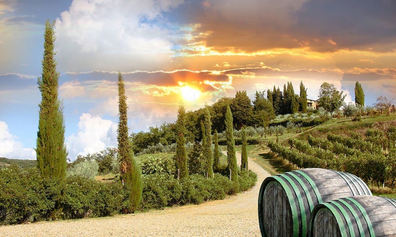Chianti y Tour de Castel San Gimignano-3