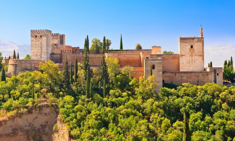 Guiada de la Alhambra de Granada desde Málaga-3