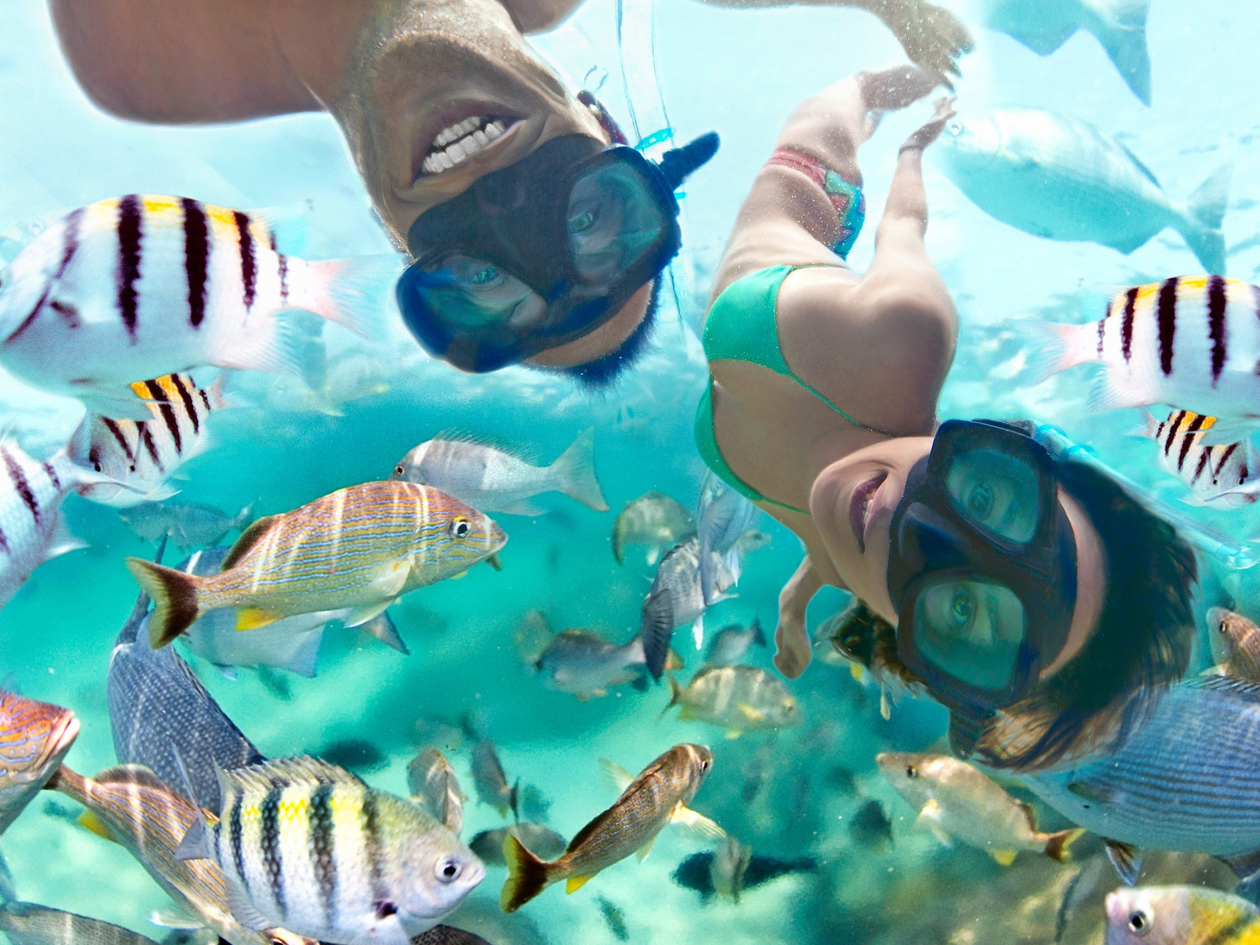 Combo 3 x 1: Tulum + Xel Ha y Dolphin Swim Tour-6