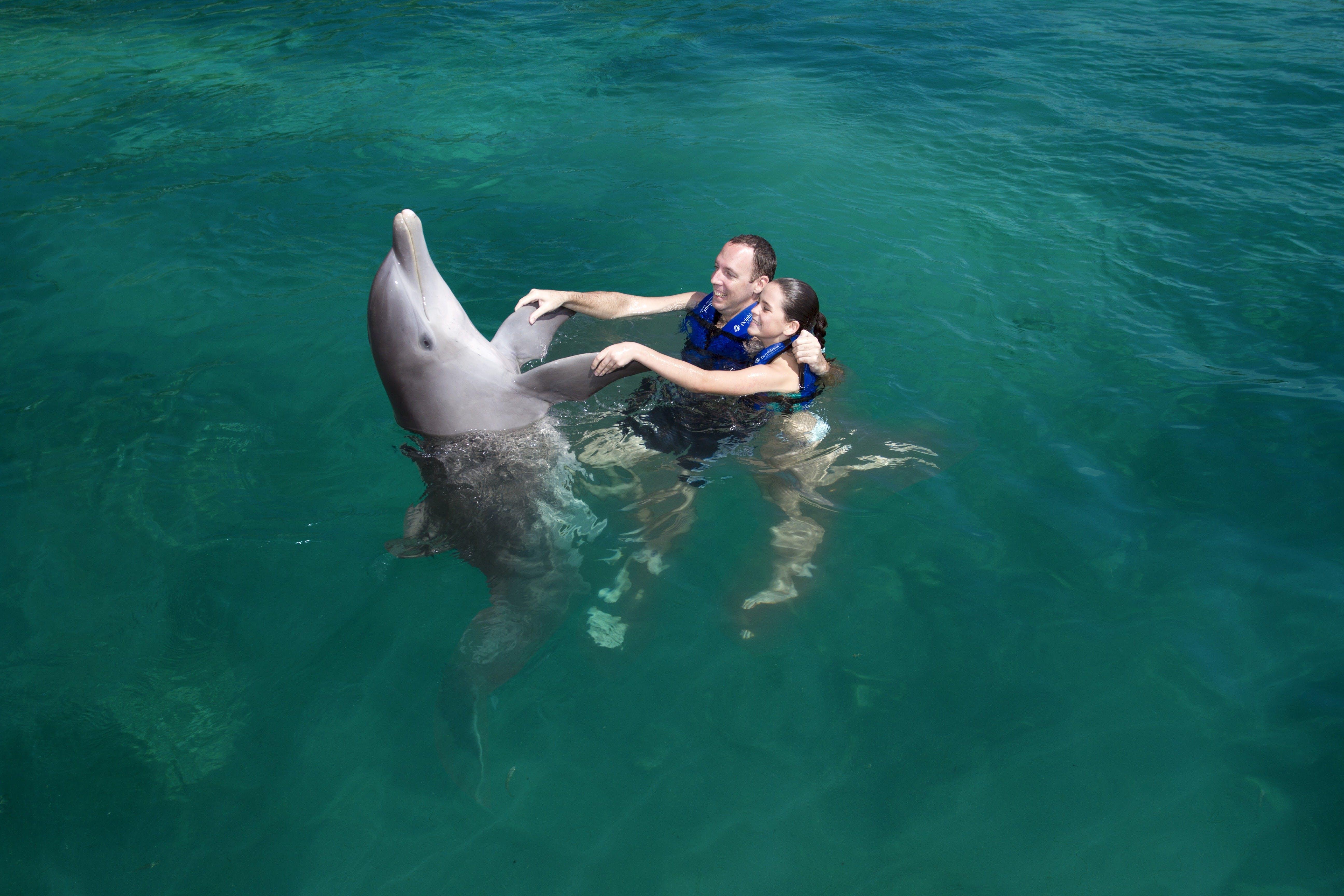 Combo 2 x 1: Chichén Itzá y delfín nadan Tour-8