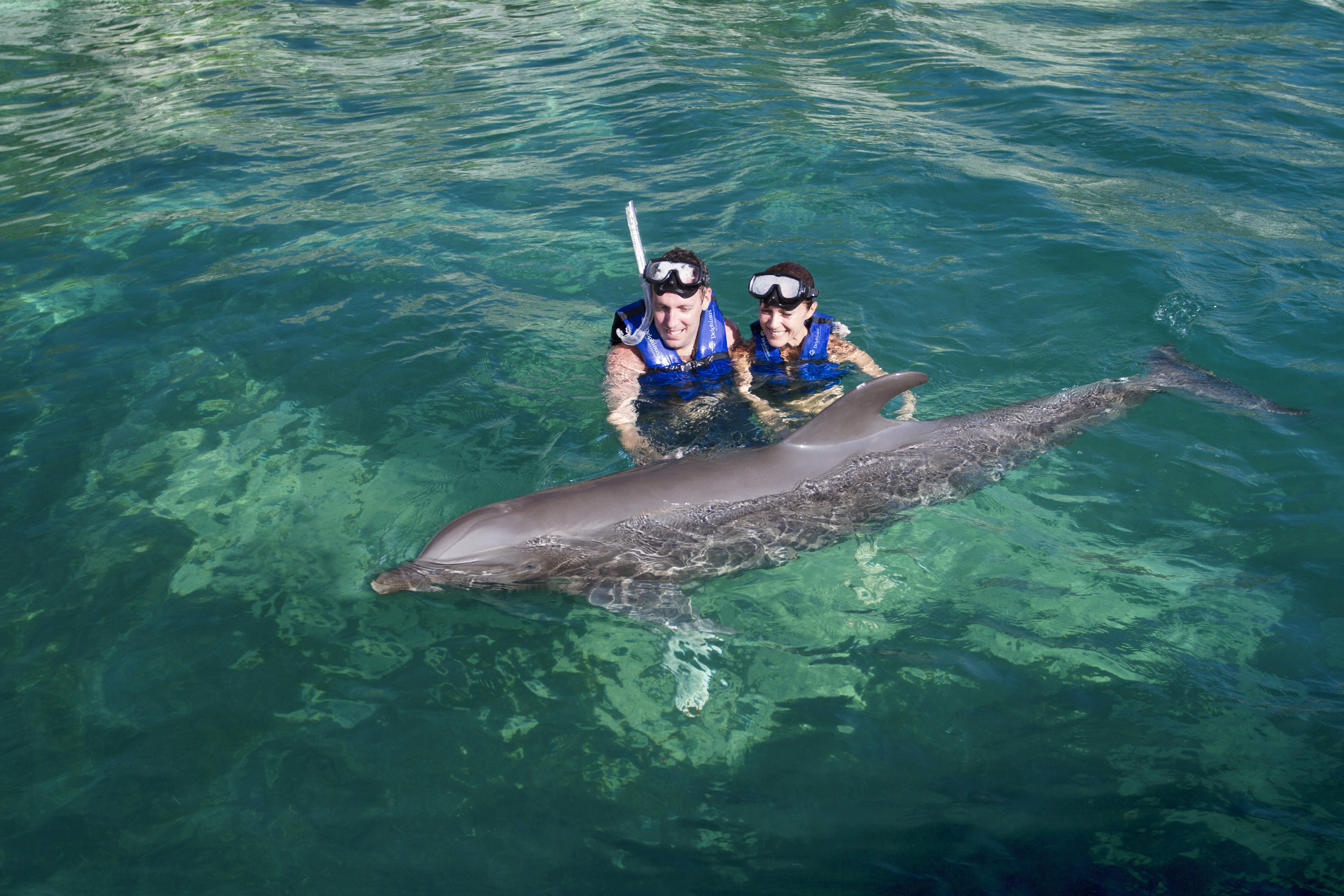 Combo 2 x 1: Chichén Itzá y delfín nadan Tour-9