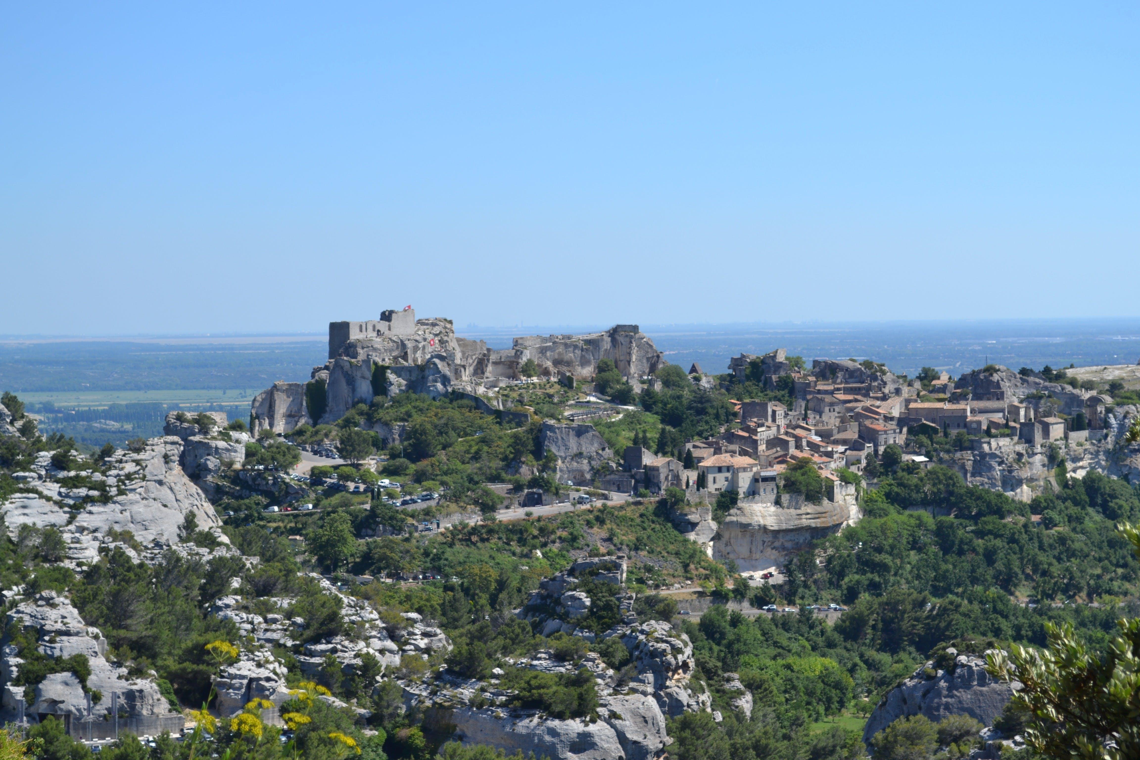 Oliva y cata de vinos en Les Baux de Provence-3